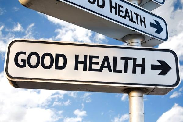 health food food