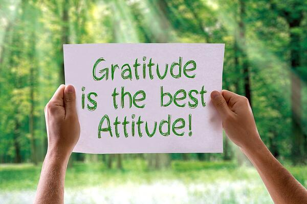 gratitude  in all situations