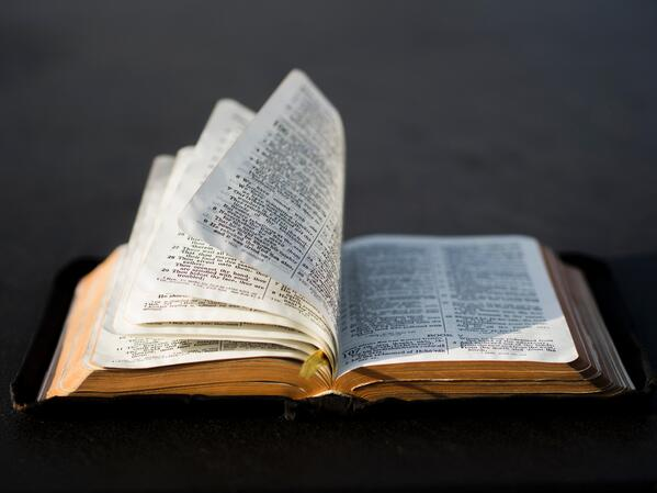 open bible college study