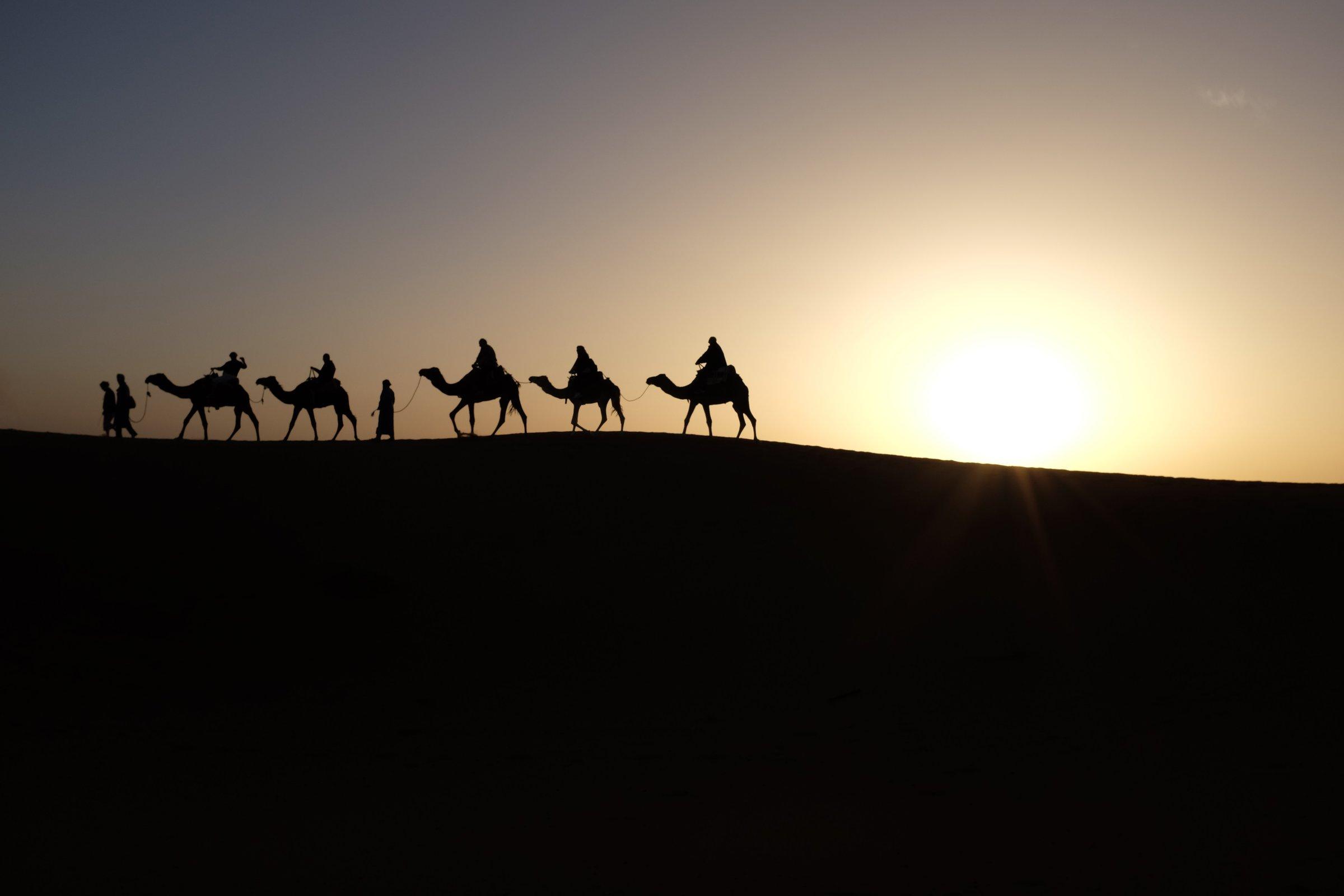 Israelites wandering desert science